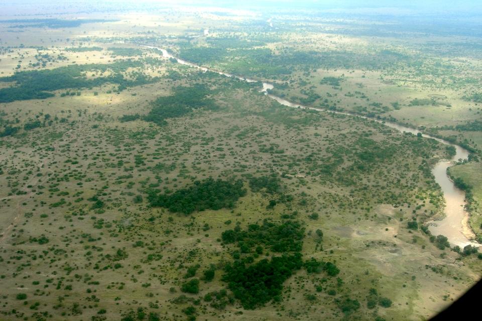 Mara River Massai Mara
