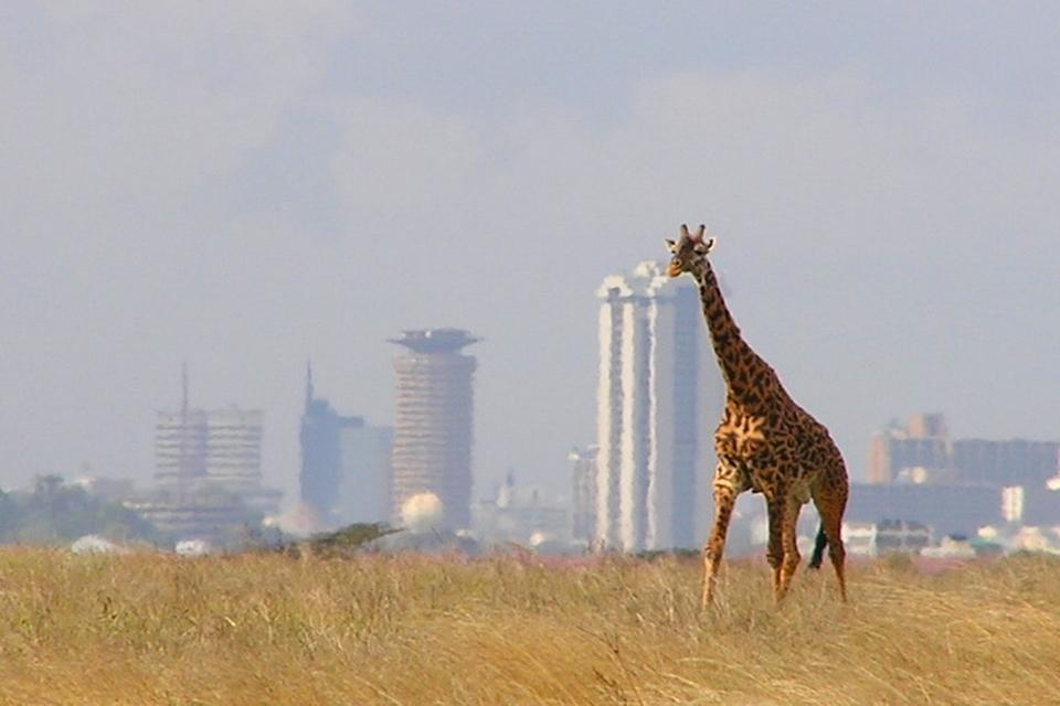 Skyline Nairobi Park