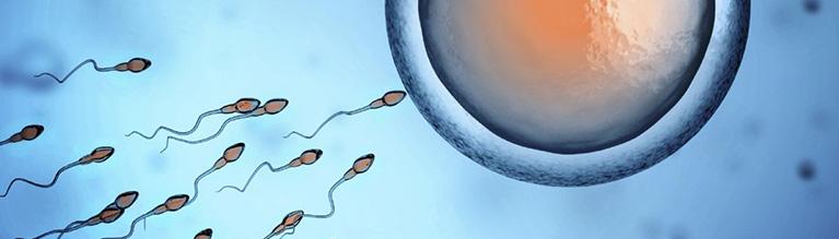 trattamenti di infertilità