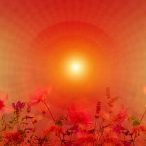 Meditation Session – In house