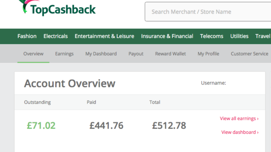 TopCashback earnings