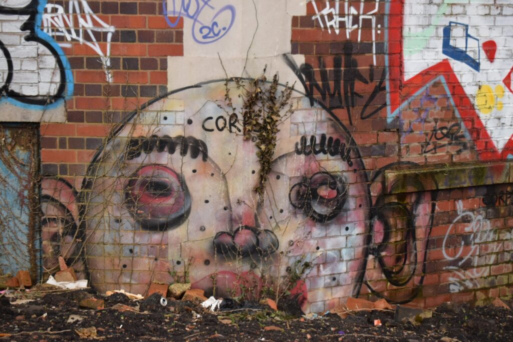 A wall in a car park in Digbeth, Birmingham,  covered in overgrowing plants and a piece of street art of a bald head with swollen eyes and big ears.