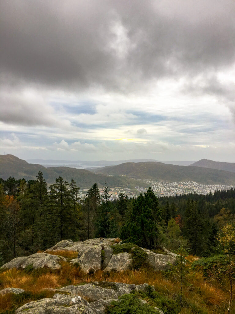 A rocky, wild forest atop mount floyen in Bergen. Fløyen is a must do if you only have 5 days in Bergen.