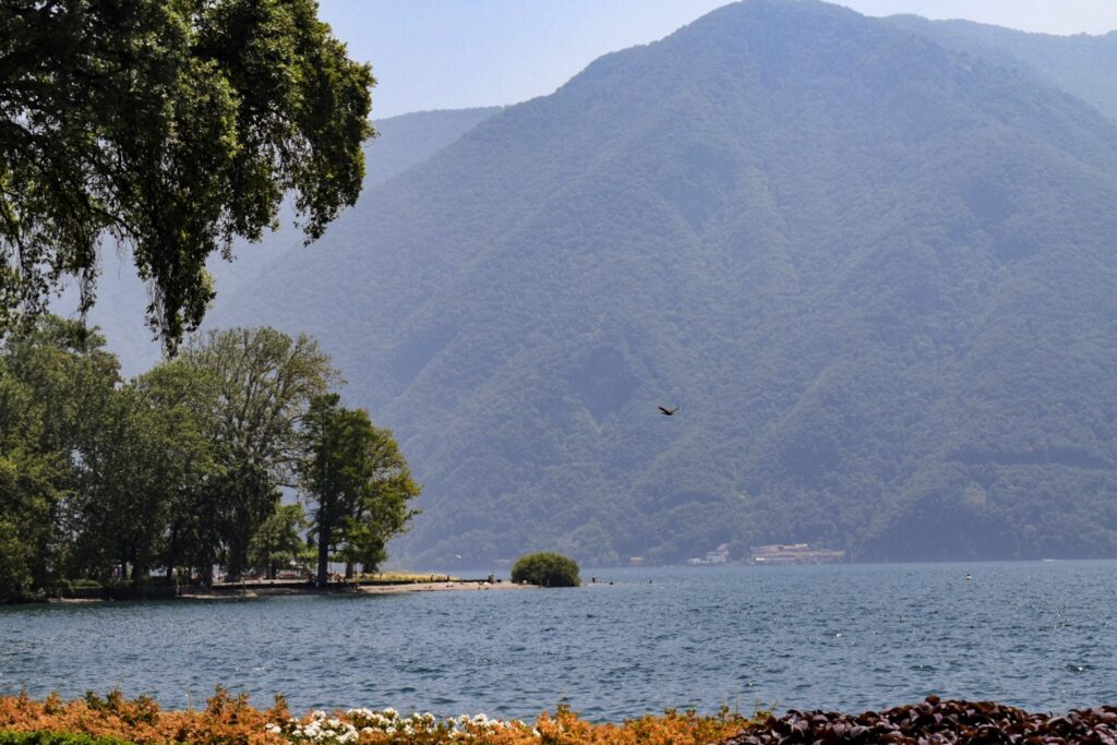 A bird flying over lake Lugano in the shadow of a mountain, with a beach in view.