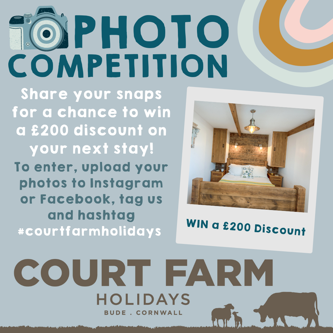 Court Farm Holidays Photography Competition