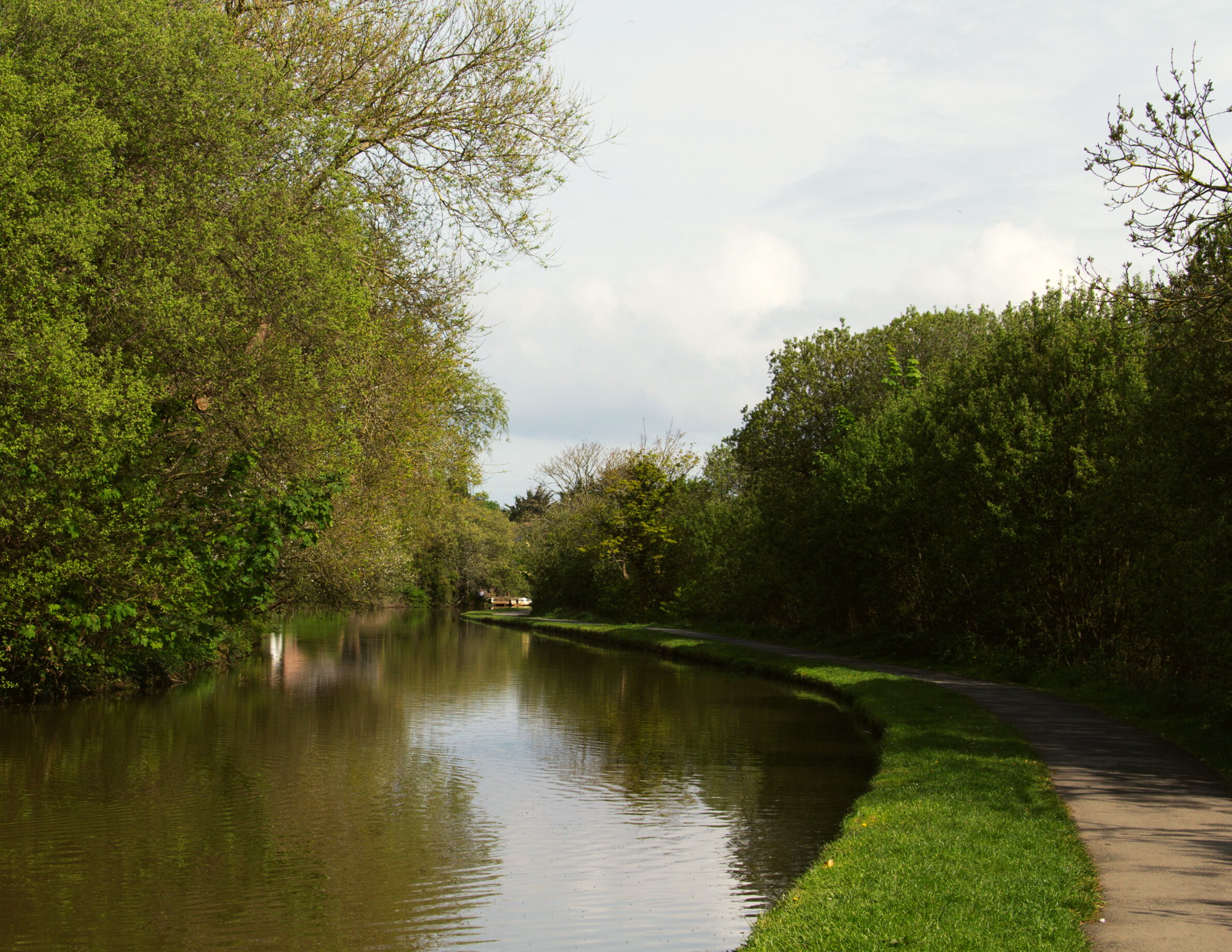 Bude Canal Dog Friendly Walk Bude