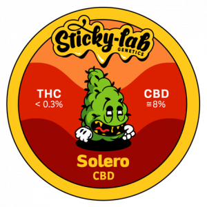 Cannabis CBD Solero Sticky Lab Genetics