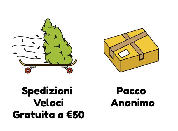SPEDIZIONI VELOVI GRATUITA A 50€ PACCO ANONIMO