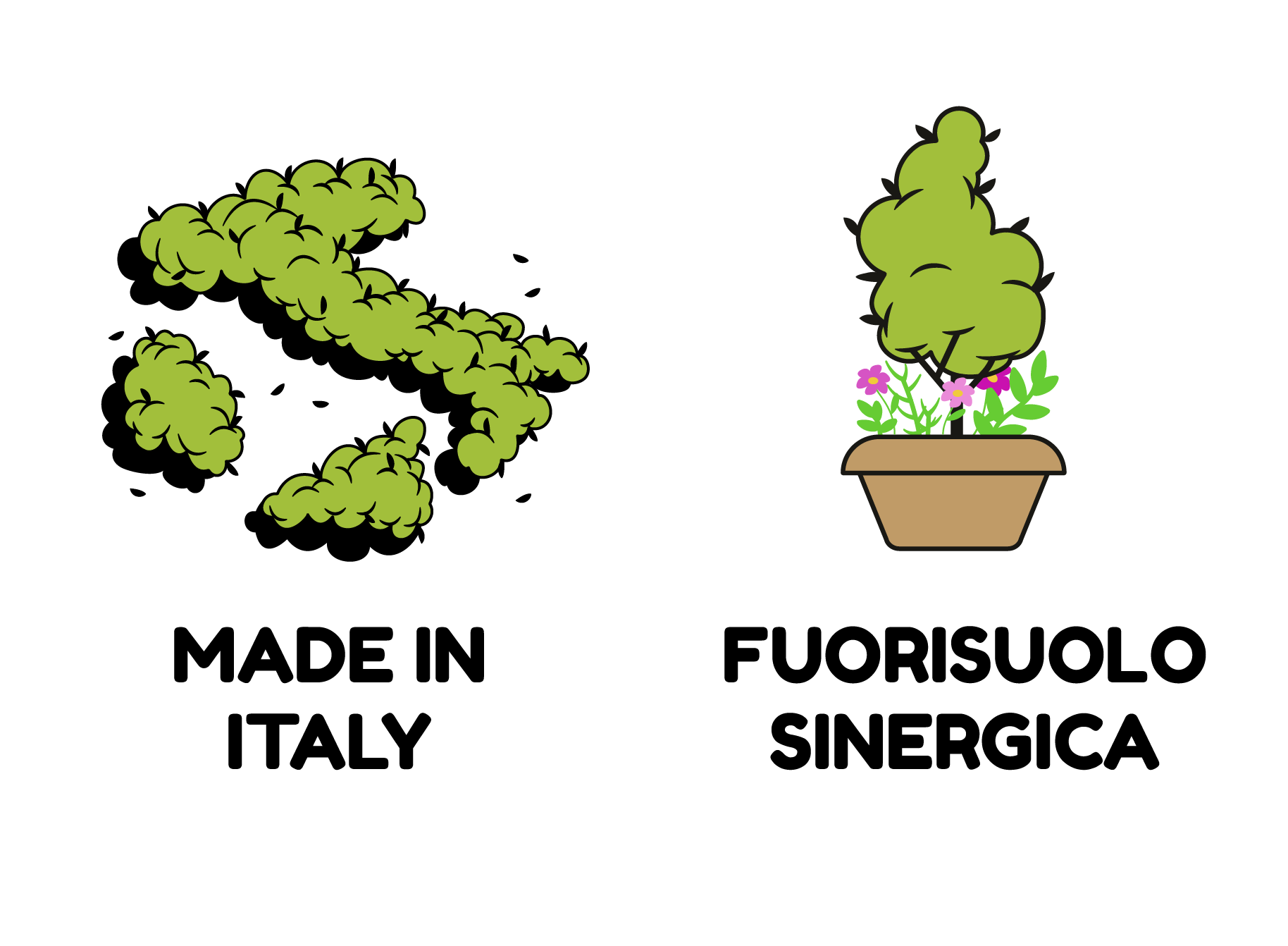 MADE IN ITALY- FUORISUOLO SINERGICA