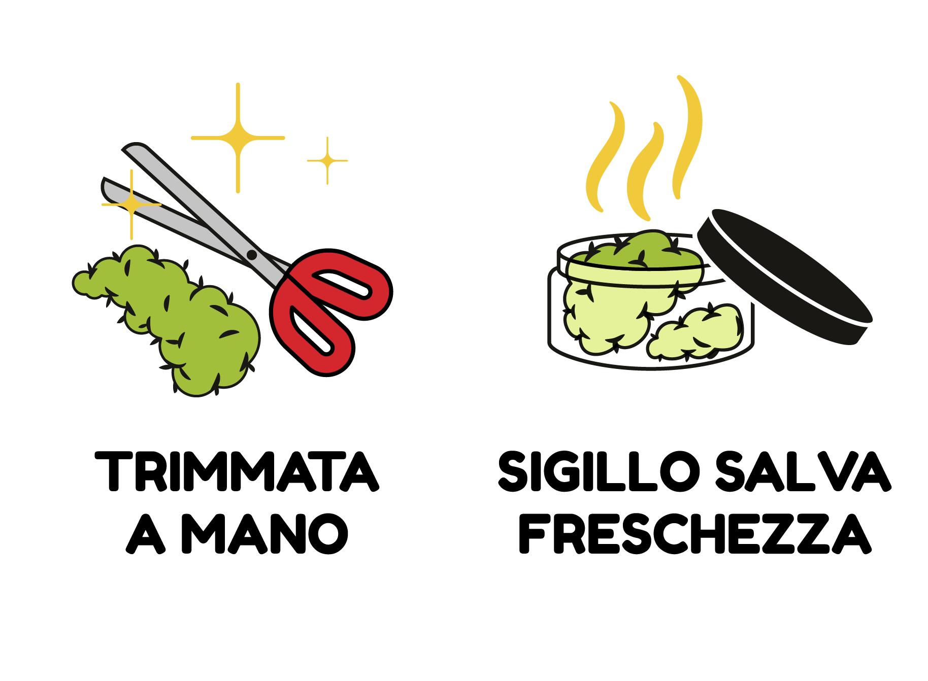 TRIMMATA A MANO - SIGILLO SALVA FRESCHEZZA