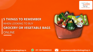 5 Things to Remember When Looking to Buy Grocery or Vegetable Bags Online
