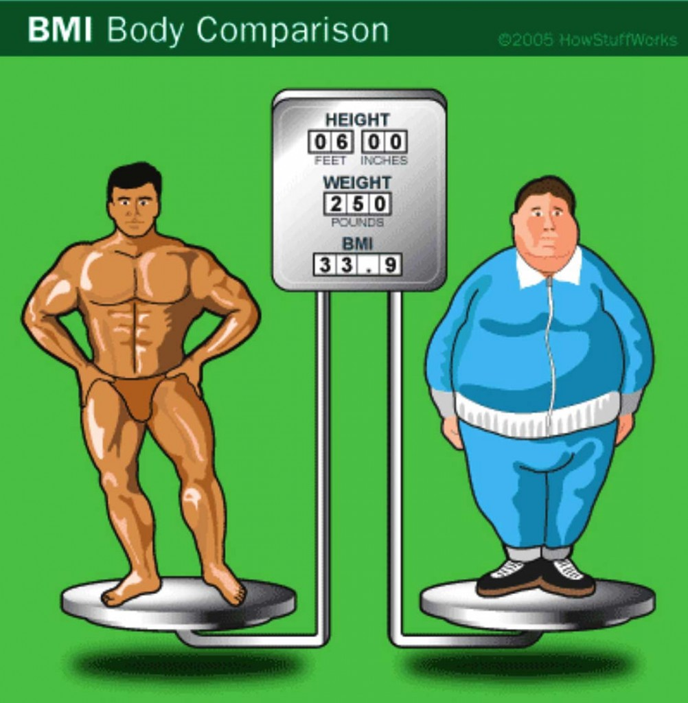 BMI Body Composition Comparison