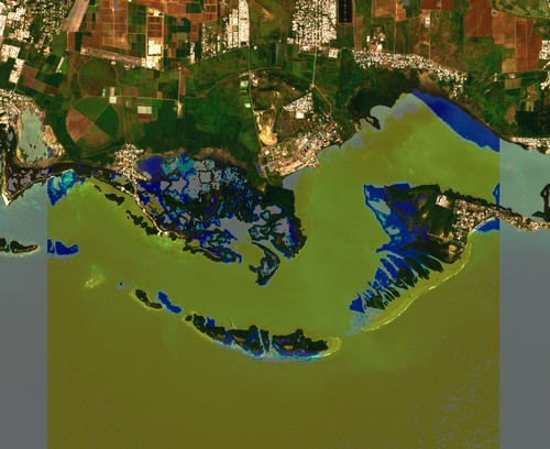 farmonaut satellite imagery