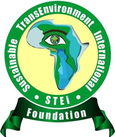 STEI Foundation, Africa