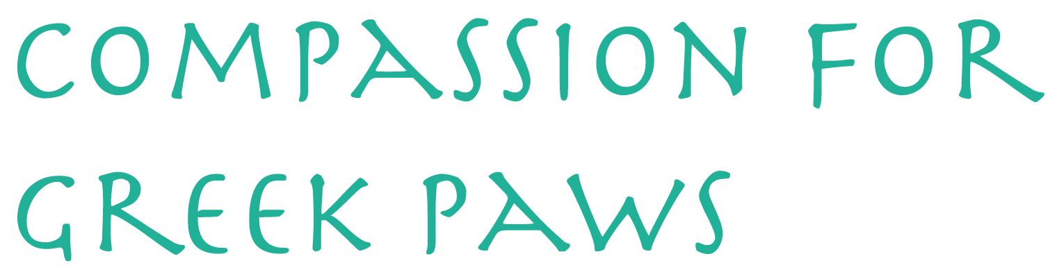 Compassion for Greek Paws