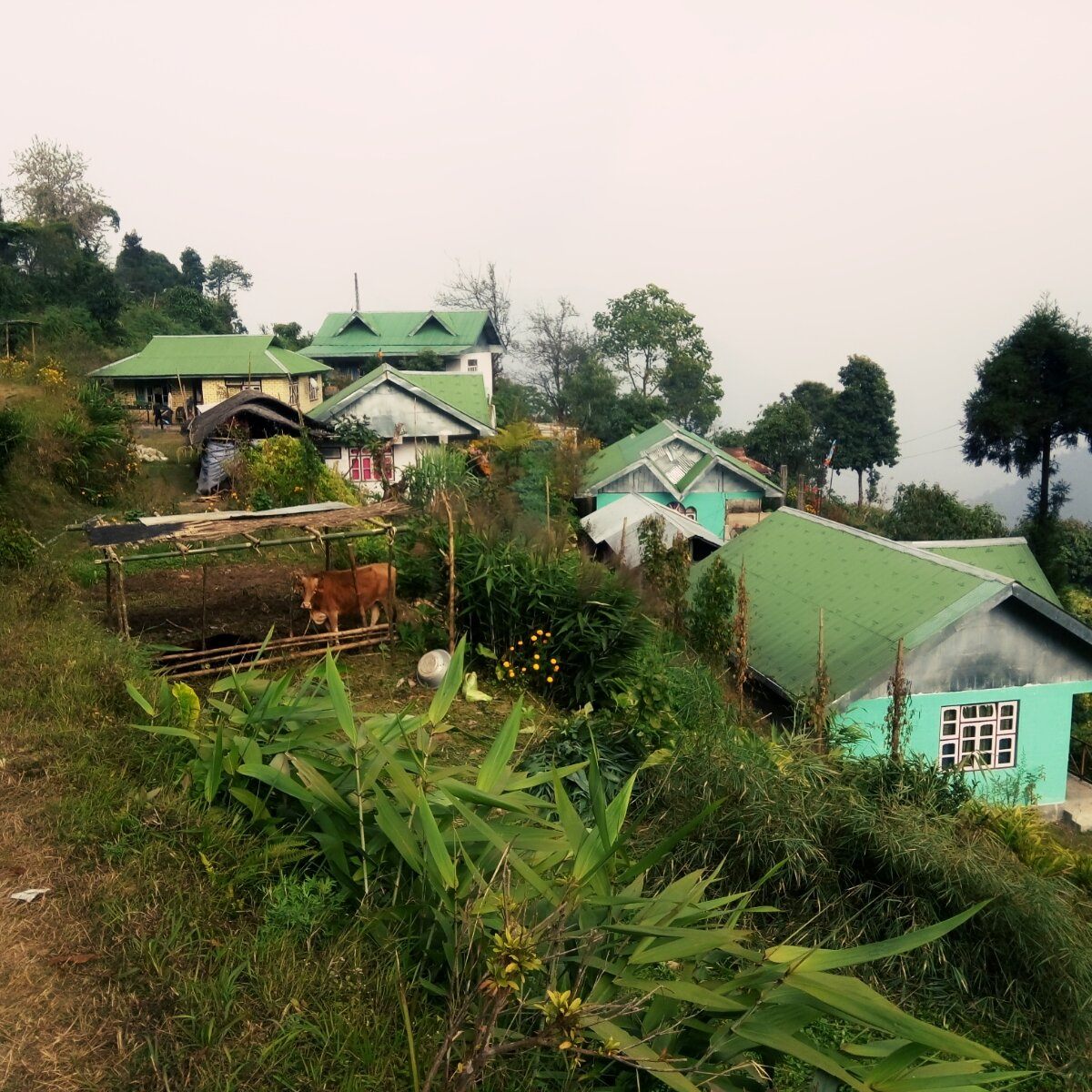 Heaven Valley Homestay
