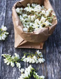 Florile de salcam comestibile