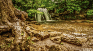 Janet's Foss in North Yorkshire,