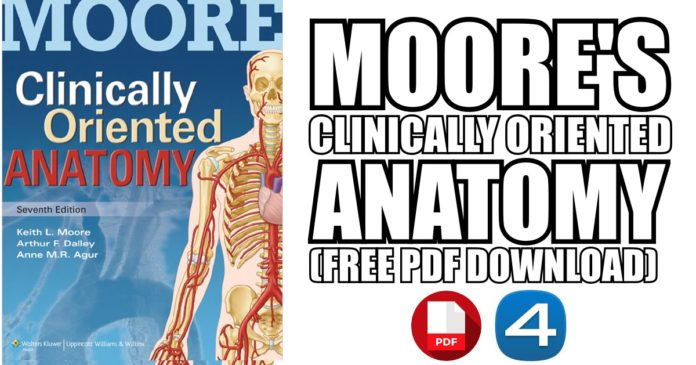 Moores-Clinically-Oriented-Anatomy-7th-Edition-PDF-Free-Download