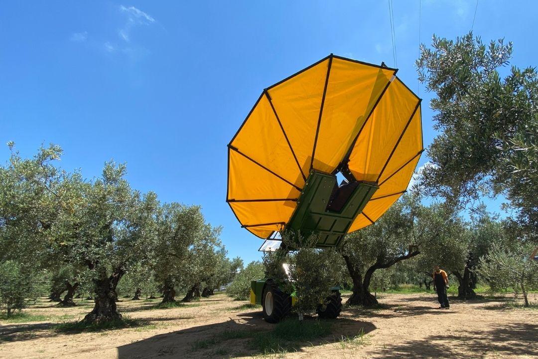 Vibrador F3 125 con paraguas