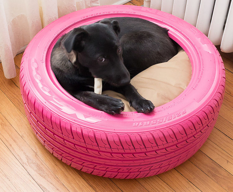 DIY Dog Bed From Tire