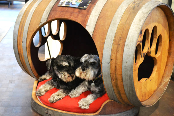 Diy Barrel Dog Bed