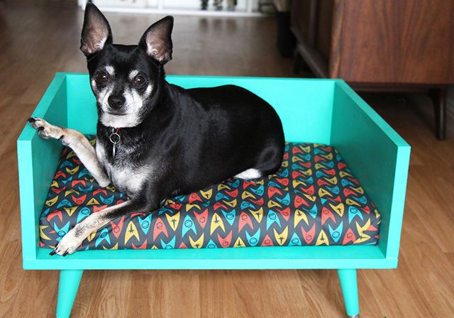 DIy Midcentury Style Dog Bed