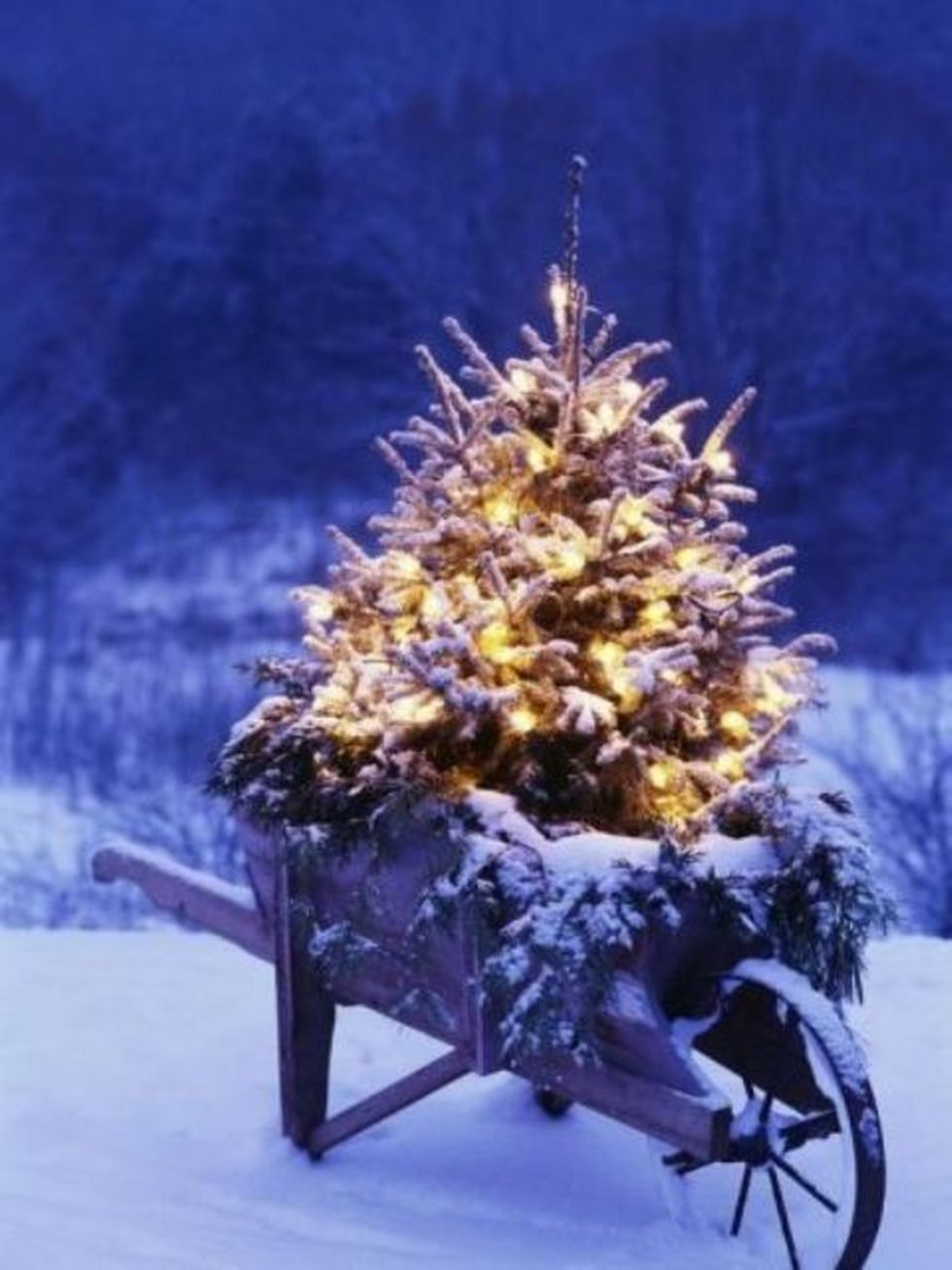 Outdoor Christmas Decorations (63)