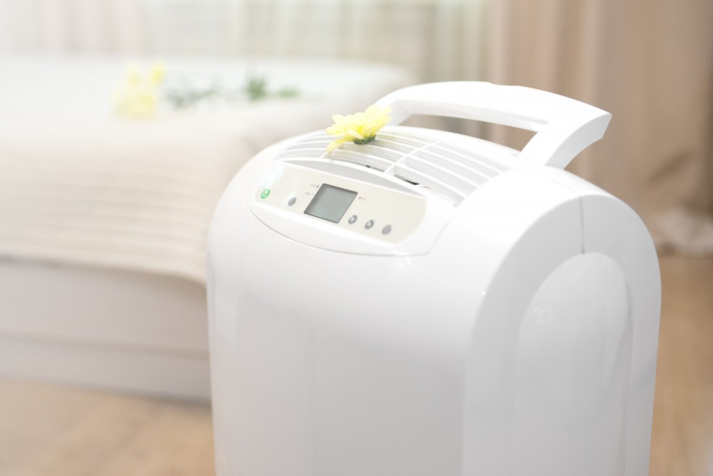 A proper purifier can both purify and get rid of odors
