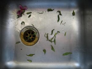 A Homeowners' Worst Enemy: Clogged Drains