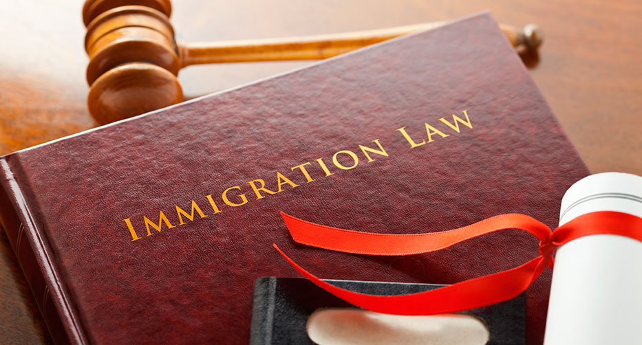 Immigration Laws2