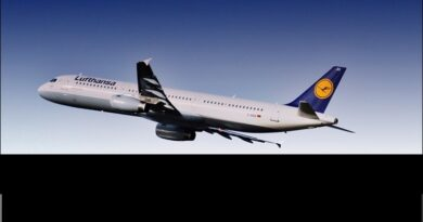 lufthansa considers financial help