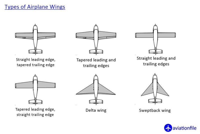 Types of Wings