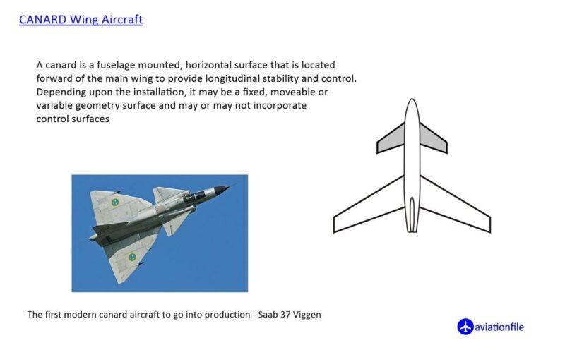 Canard Wing Aircraft