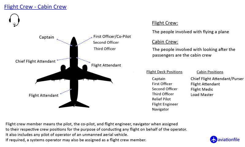 Flight Crew - Cabin Crew