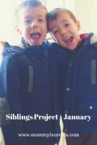 Siblings Project Jan 18 Pin