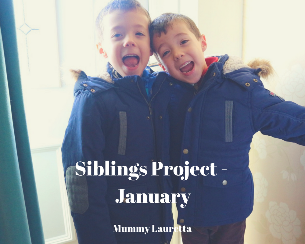 Siblings Project Jan 18 blog