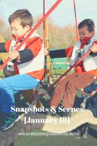 Snapshots & Scenes January 18 Pin