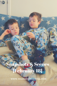 Snapshots & Scenes Feb 18 Pin