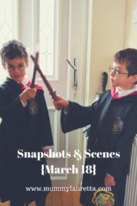 Snapshots & Scenes Mar 18 Pin
