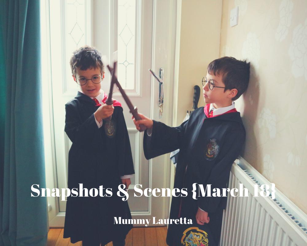 Snapshots & Scenes Mar18 blog