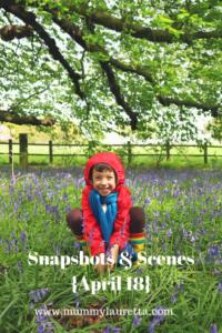 Snapshots & Scenes April 18 Pin