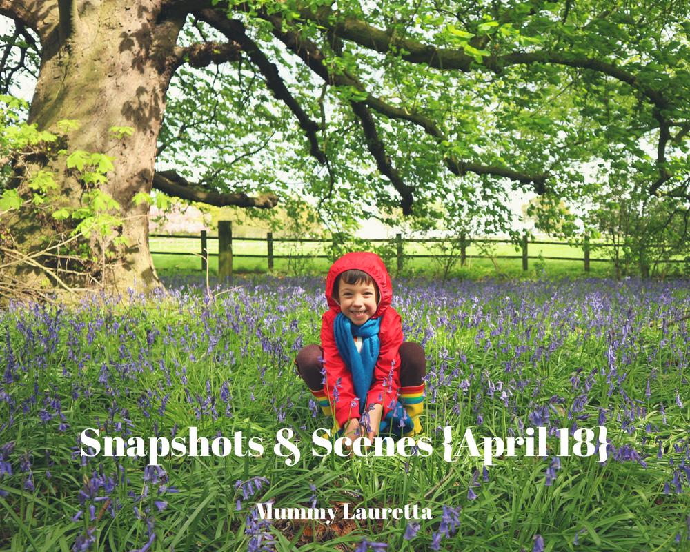 Snapshots & Scenes April 18 blog