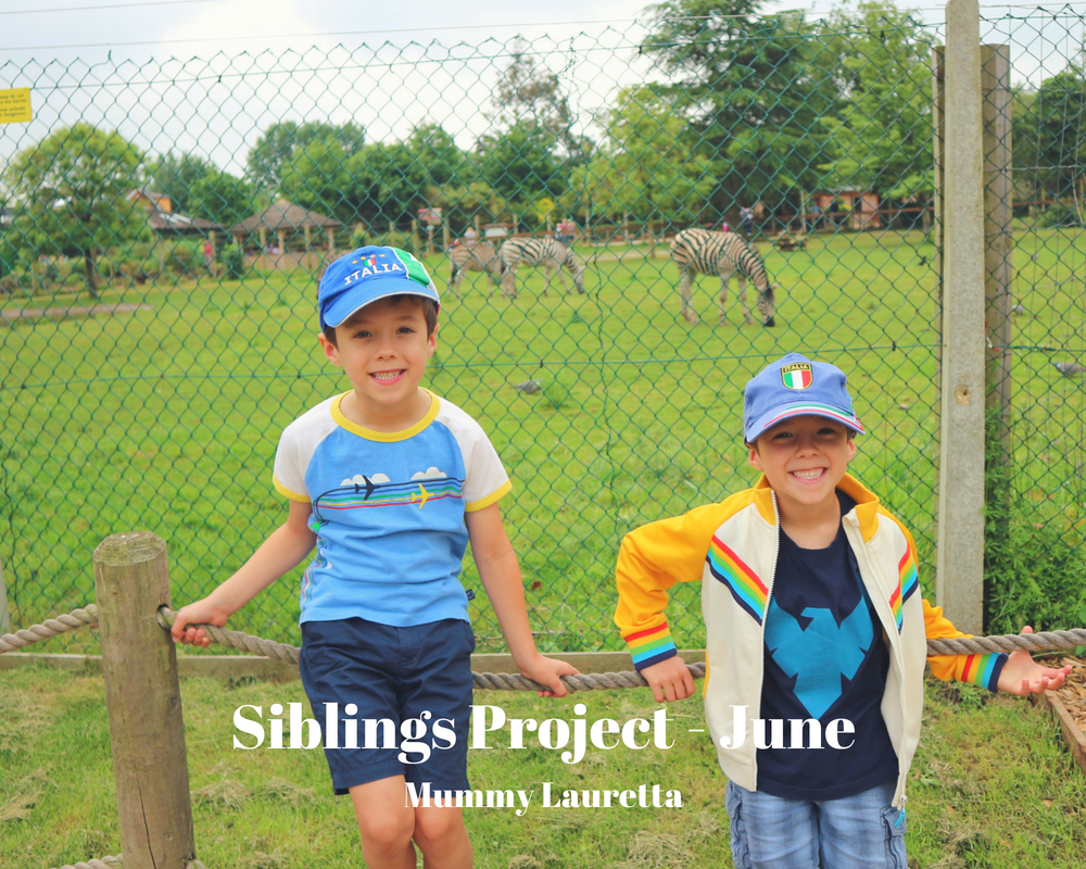 Siblings Project June 18 Blog