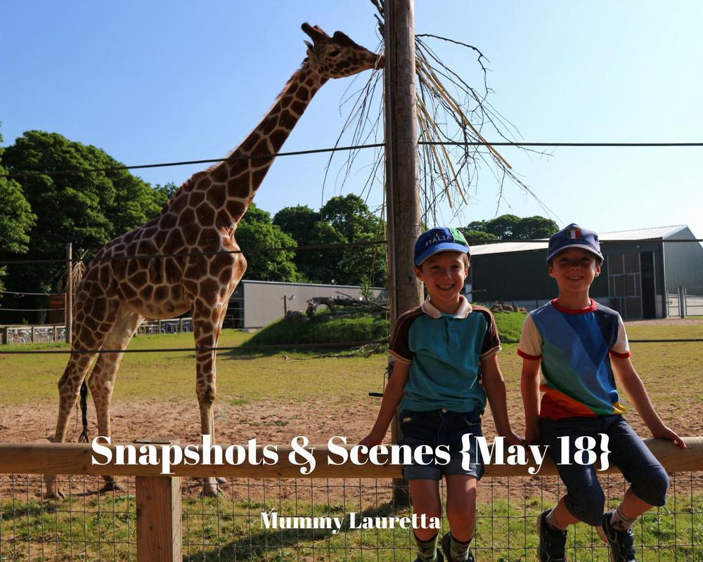 Snapshots & Scenes May 18 blog