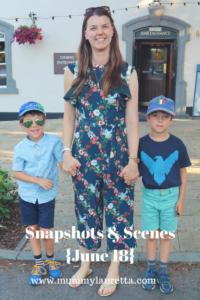 Snapshots & Scenes June 18 Pin