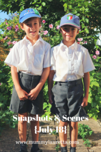 Snapshots & Scenes July 18 Pin
