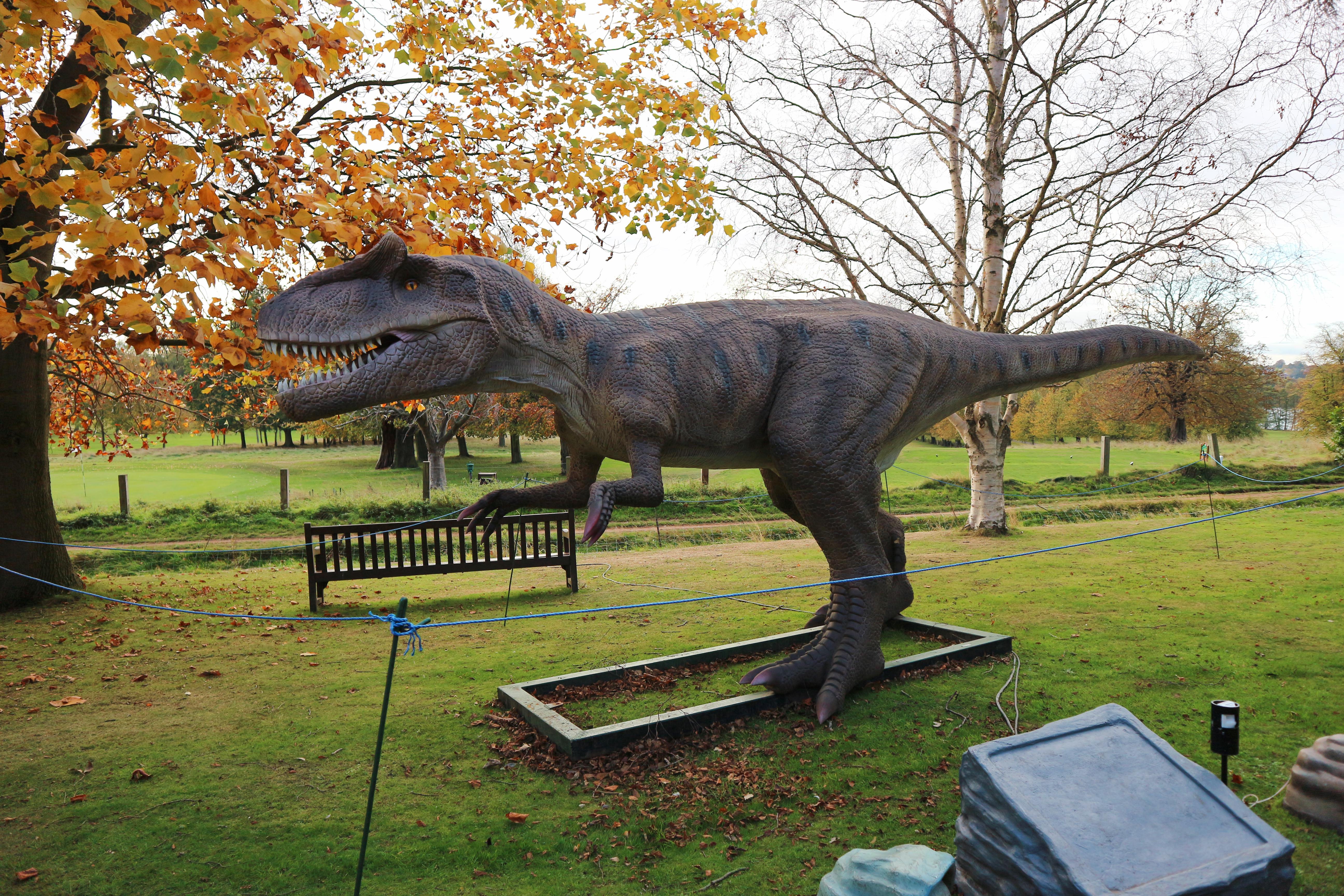 Jurassic Kingdom at Wollaton Park