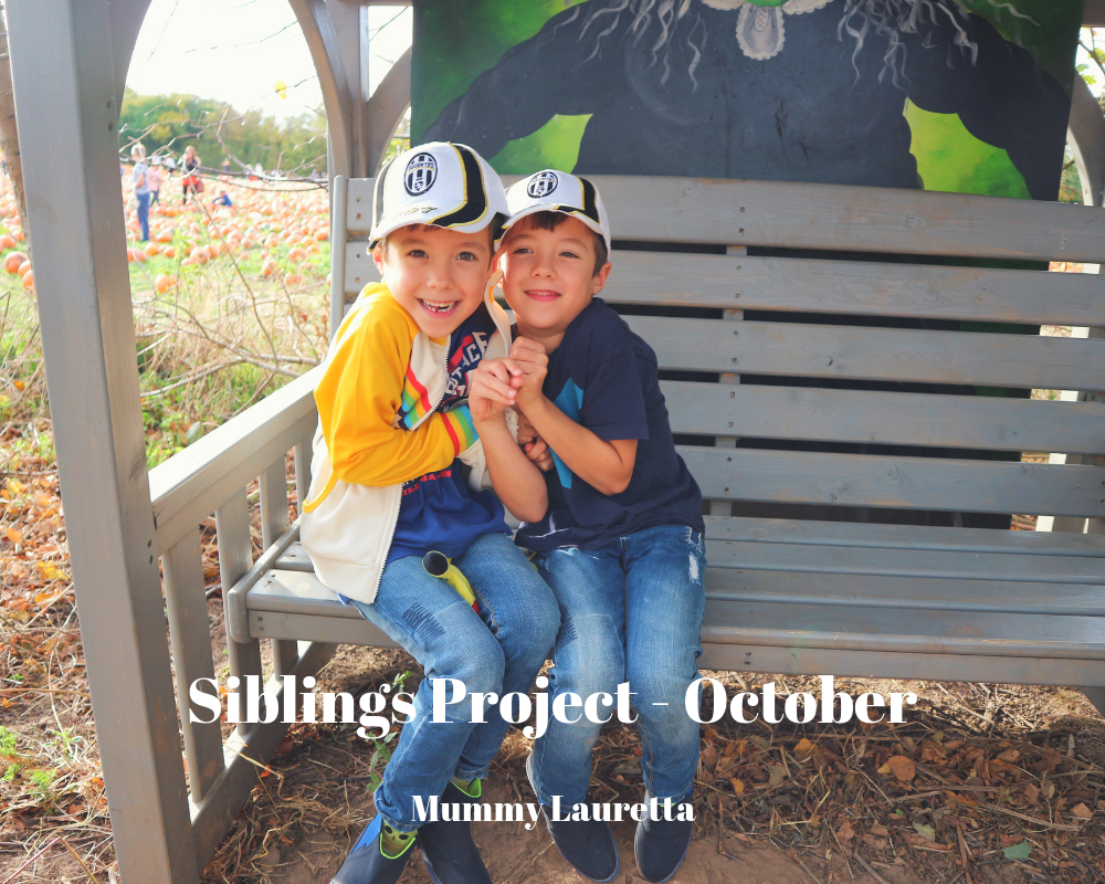 Siblings Project Oct 18 Blog