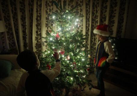 Siblings Project December 2018